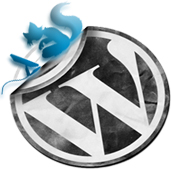 Wordpress Destek